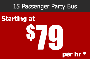 15 passenger party bus rental