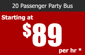 20 passenger party bus rental